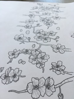 The RAD Board Co. Cherry Blossoms