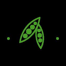 Mooi River Pulses Logo